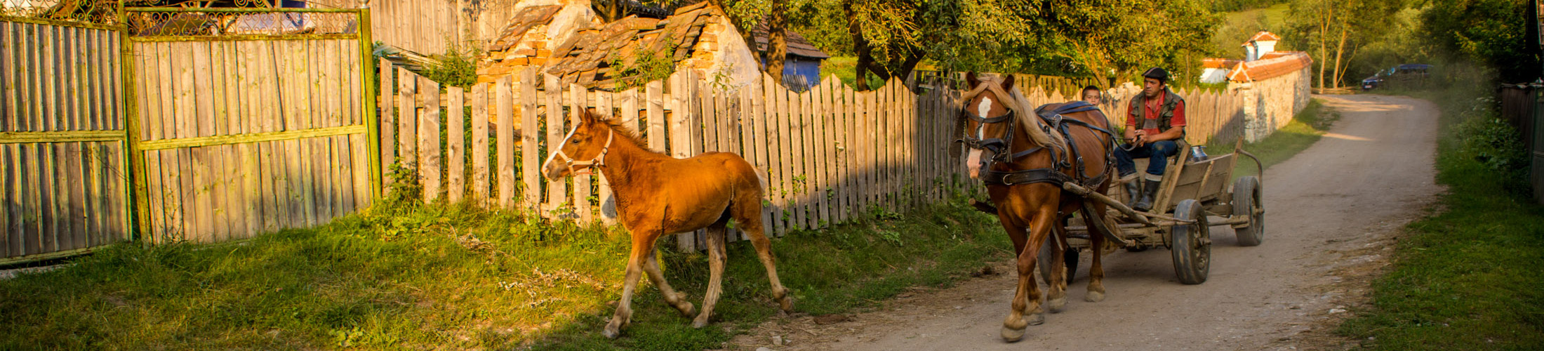 Countryside, Transylvania, Romania