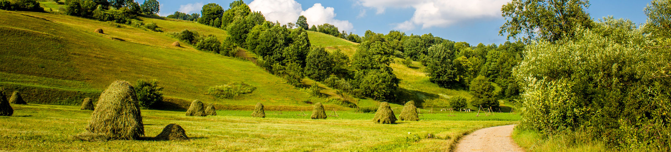 Transylvanian Hills, Romania