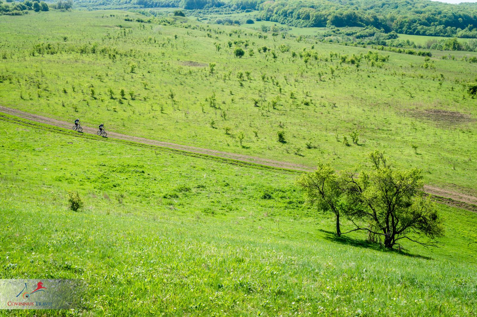 Bike in Transylvania