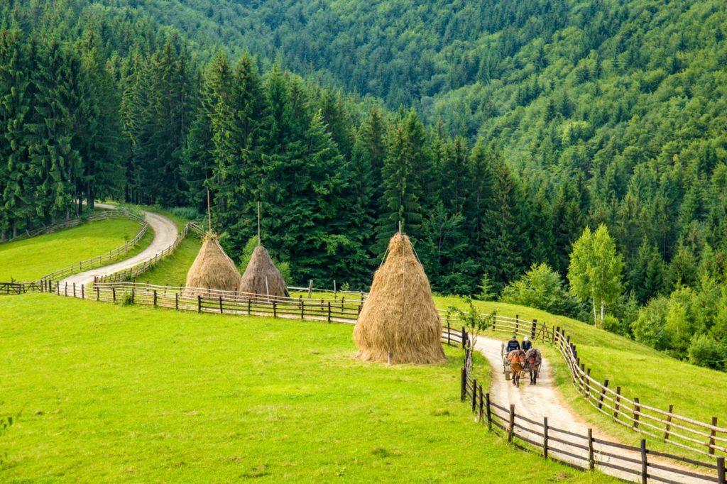 Rural life in Romania