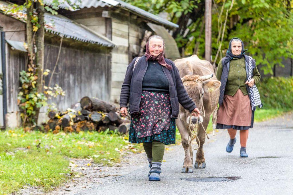 Rural Maramures, Romania