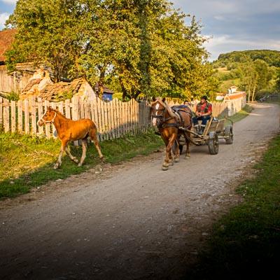 The Countryside of Romania Tour