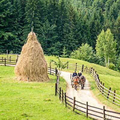 Treasures of Romania Tour
